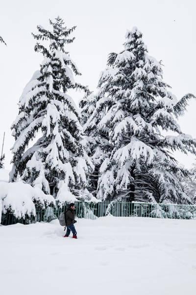 Photograph - Winter Trekking by Okan YILMAZ