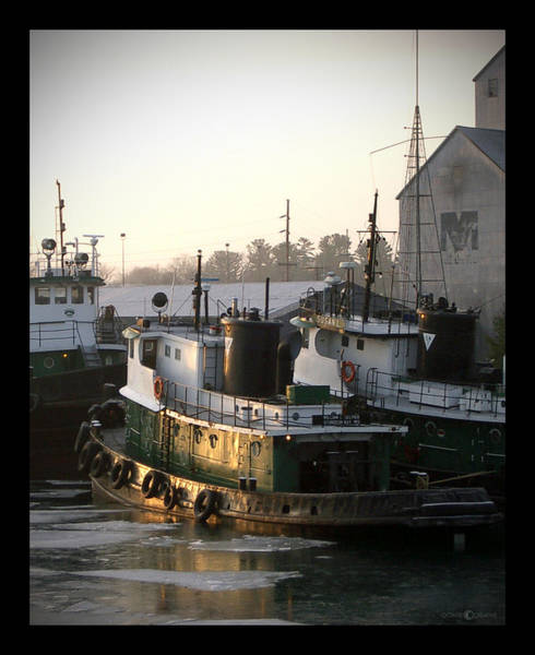 Photograph - Winter Tugs by Tim Nyberg