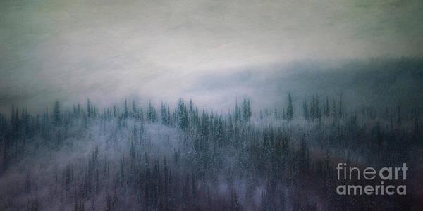 Hillside Photograph - Winter View 2 by Priska Wettstein