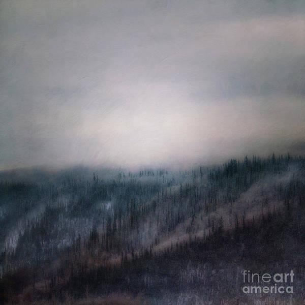 Hillside Photograph - Winter View 3 by Priska Wettstein