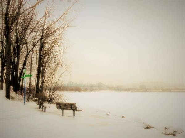 Photograph - Winter View Over Montreal by Cristina Stefan
