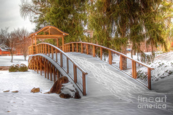 Wall Art - Photograph - Winter Walking Bridge by Sharon McConnell