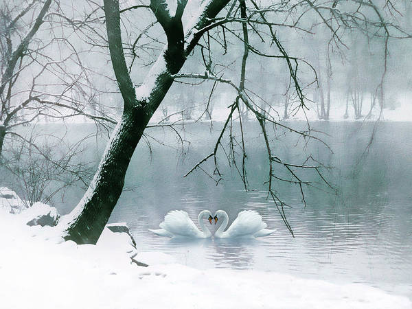 Wall Art - Photograph - Winter Waltz by Jessica Jenney