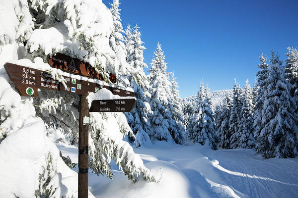 Photograph - winter way in the Upper Harz by Andreas Levi
