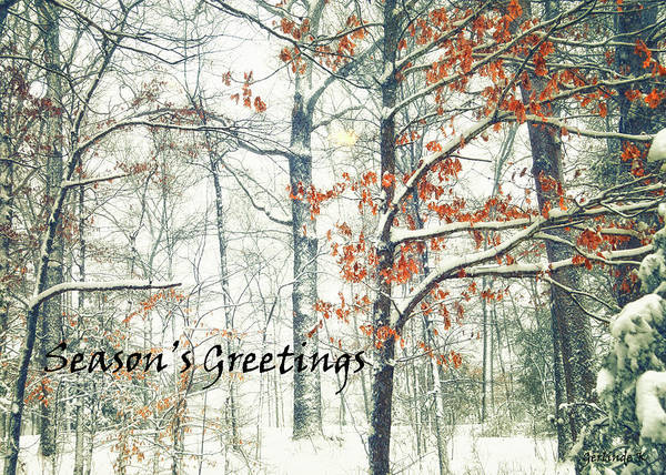 Photograph - Winter Wonderland by Gerlinde Keating - Galleria GK Keating Associates Inc