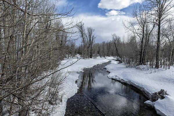 Photograph - Cottonwood Creek - Grand Tetons National Park by Belinda Greb