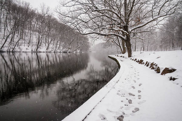 Photograph - Winter Wonderland by Kristopher Schoenleber