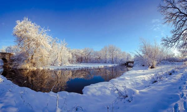 Elgin Photograph - Winter Wonderland by Lauri Novak