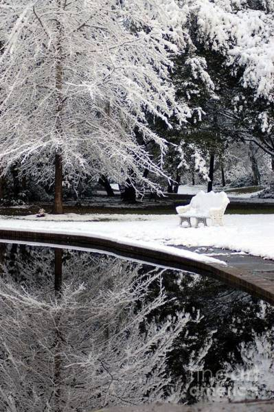 Photograph - Winter Wonderland Reflections by Donna Bentley