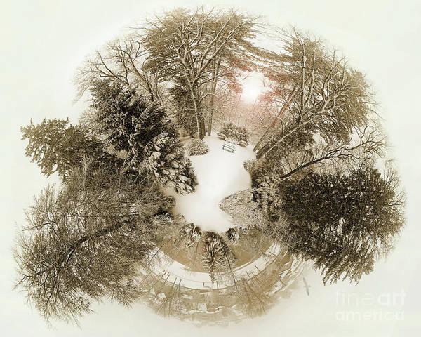 Photograph - Wintergarden by Edmund Nagele
