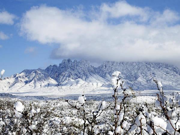 Photograph - Organ Mountains Winter Wonderland by Kurt Van Wagner