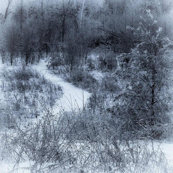 Photograph - Winters Eve by David Heilman