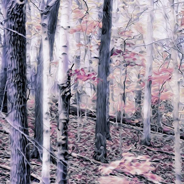 Mixed Media - Winter's First Kiss by Susan Maxwell Schmidt