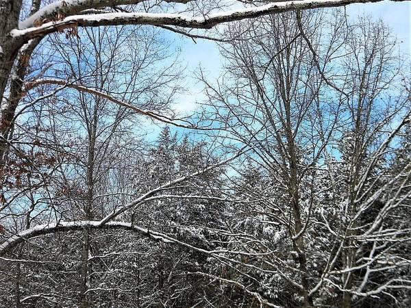 Photograph - Winter's First Snow by Ken Bradford