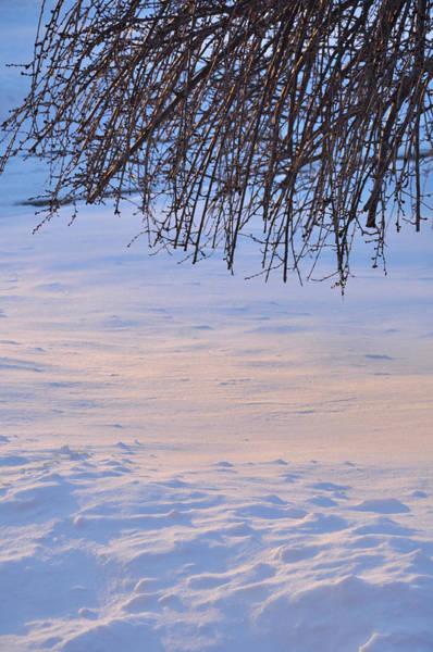 Photograph - Winter's Glow by Frank Mari