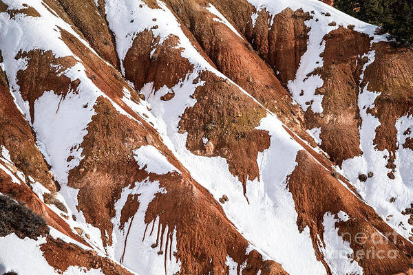 Wall Art - Photograph - Winter's  Kiss - Bryce Canyon   by Sandra Bronstein
