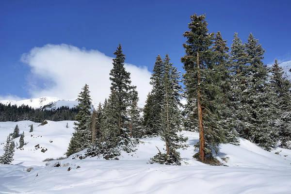 Photograph - Winter's Peace by Leda Robertson
