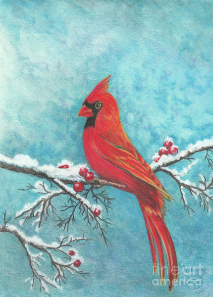 Drawing - Winter's Song by Nancy Cupp