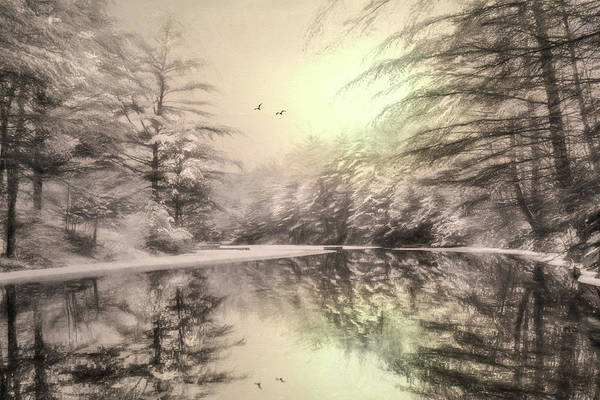Wintry Photograph - Winter's Soul by Lori Deiter