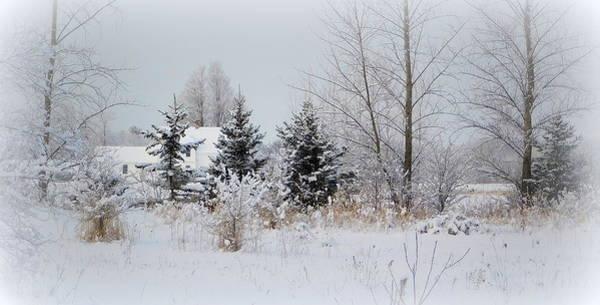 Wall Art - Photograph - Winter's Touch by Karen Cook