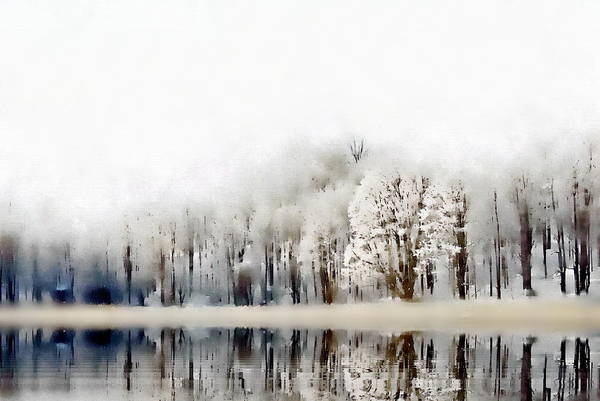 Art Print featuring the photograph Winterscape  by Andrea Kollo
