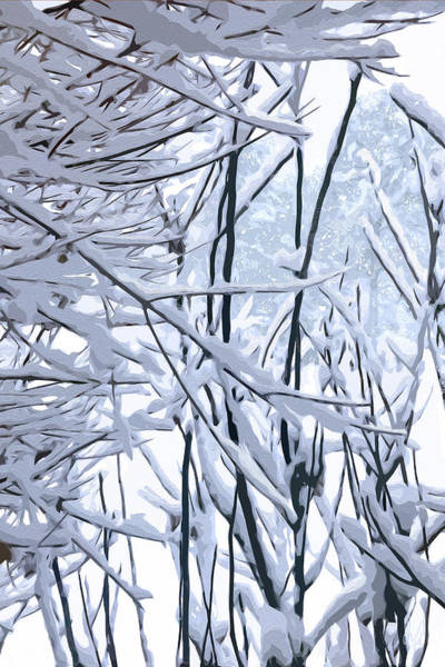 Digital Art - Wintertide by Gina Harrison