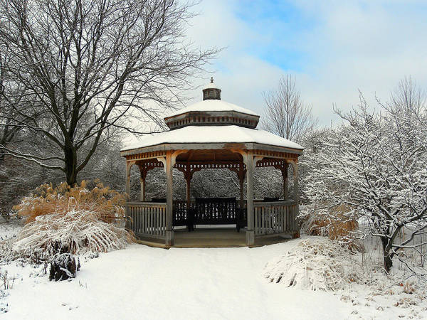 Wall Art - Photograph - Wintertime by Teresa Schomig