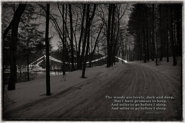 Photograph - Wire Bridge Poster by Patrick Groleau