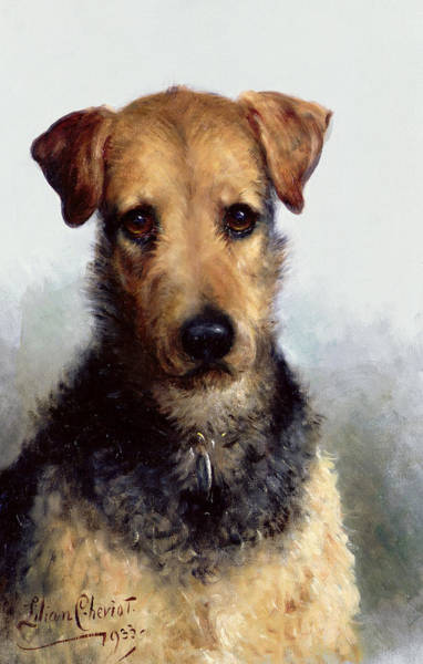 Wire Painting - Wire Fox Terrier by Lilian Cheviot