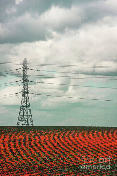 Voltage Photograph - Wired by Evelina Kremsdorf