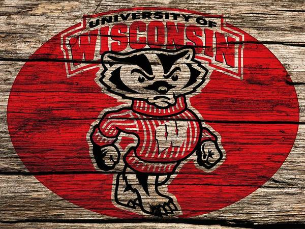 Wall Art - Digital Art - Wisconsin Badgers Barn Door by Dan Sproul