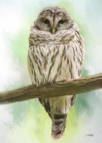 Painting - Wisdom Listens - Barred Owl Art by Jordan Blackstone
