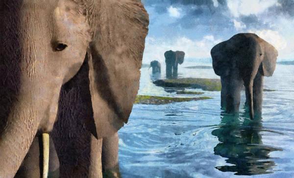 Reflections Digital Art - Wisdom Painted by Cynthia Decker