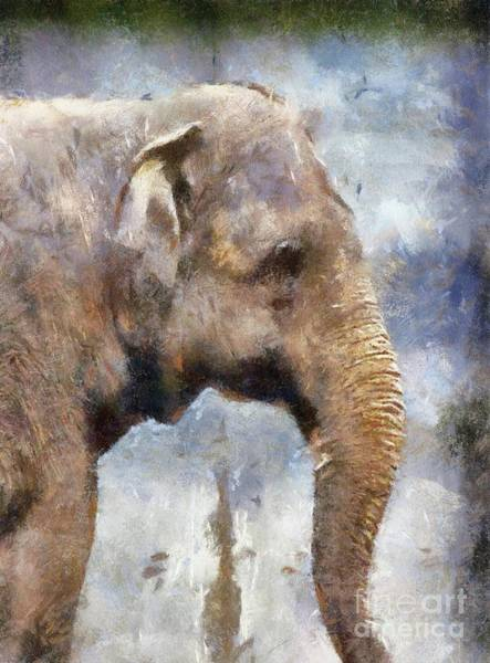 Wall Art - Painting - Wise Elephant by Sarah Kirk