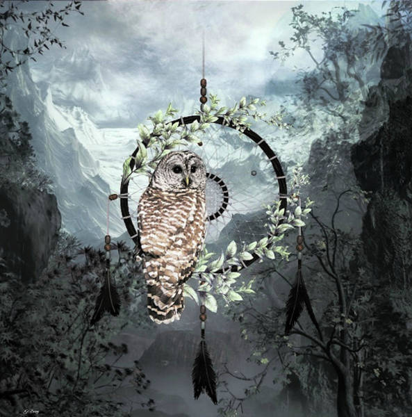 Wild Life Mixed Media - Wise Owl Dreamcatcher by G Berry