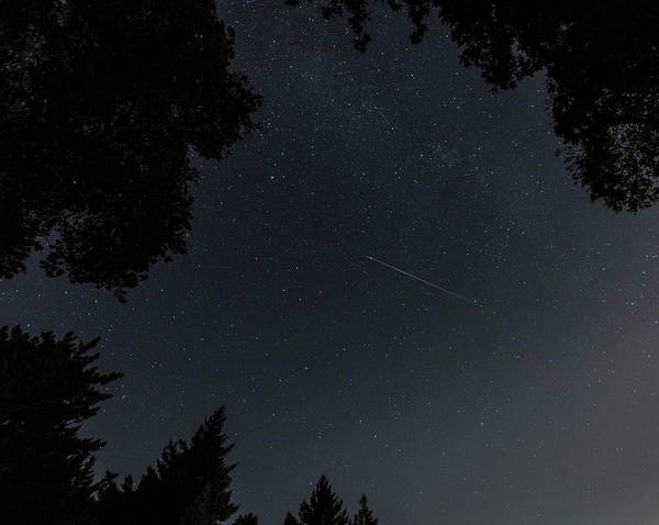 Photograph - Wish Upon A Star by Alex Lapidus