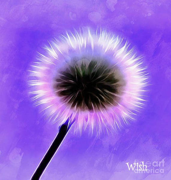 Digital Paint Digital Art - Wishes Come True by Krissy Katsimbras