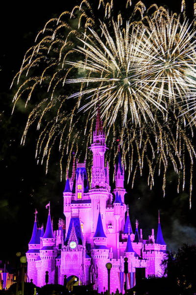Photograph - Wishes Fireworks Disney World  by Andy Myatt