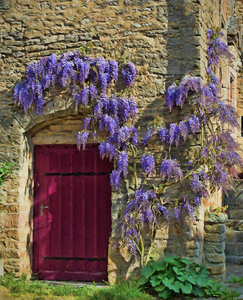 Chateauneuf Photograph - Wisteria, Chateauneuf, Cote-d'or, France by Curt Rush