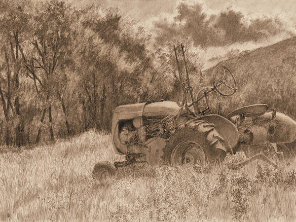 Drawing - Wistful Sepia by David King