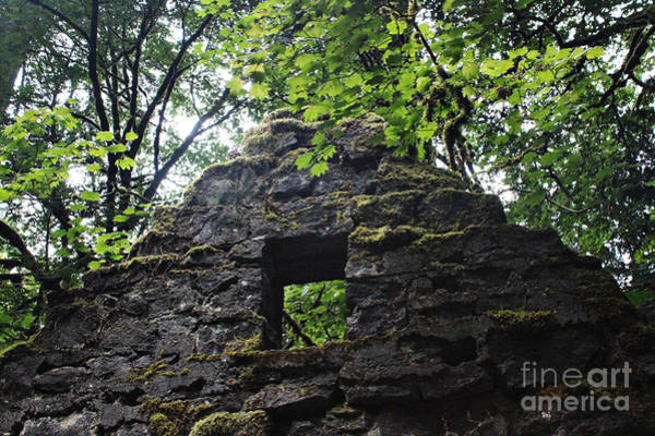 Wall Art - Photograph - Witch's Meeting Place by Michelle Williamson