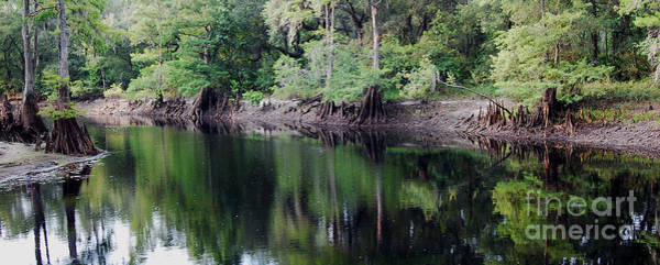 Crooked River Photograph - Withlacoochee River by Robert Meanor