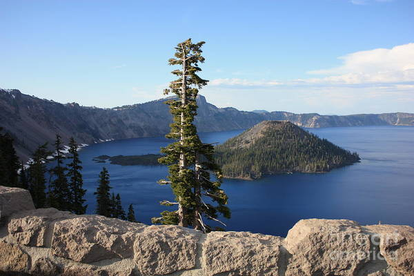 Photograph - Wizard Island With Rock Fence At Crater Lake by Carol Groenen