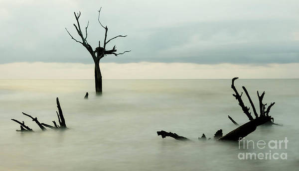 Bulls Island Photograph - Wizard's Cauldron by DiFigiano Photography