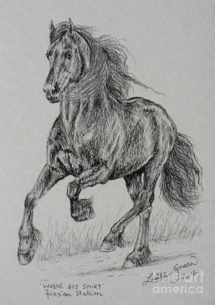 Friesian Drawing - Wobke 403 Sport Friesian by Louise Green