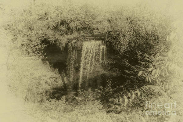 Photograph - Wolcott Falls by William Norton