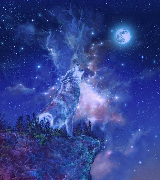 Pack Digital Art - Wolf And Sky Blue 2 by Bekim M