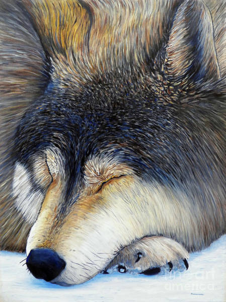 Wall Art - Painting - Wolf Dreams by Brian  Commerford