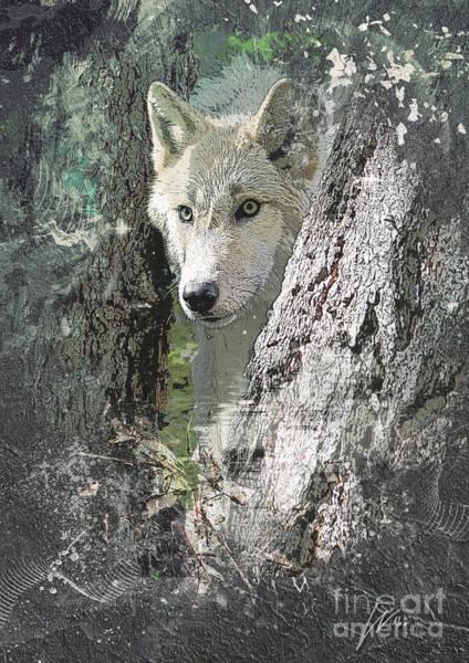 Photograph - Wolf - Inspirations by Wilko Van de Kamp