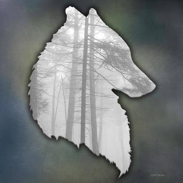 Digital Art - Wolf Portrait by Ericamaxine Price